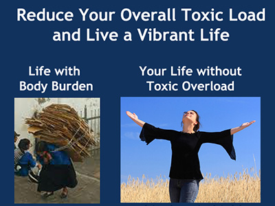 Reduce Overall Toxic Load from EMF