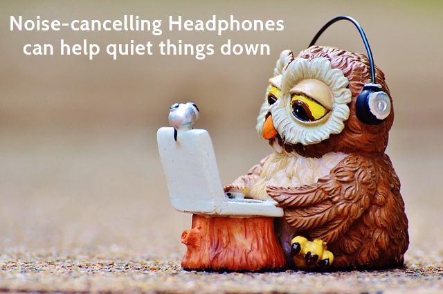 Owl wearing noise cancelling headphones