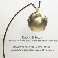 EMF protection Room BioElectric Shield